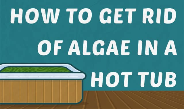 how to get rid of green algae