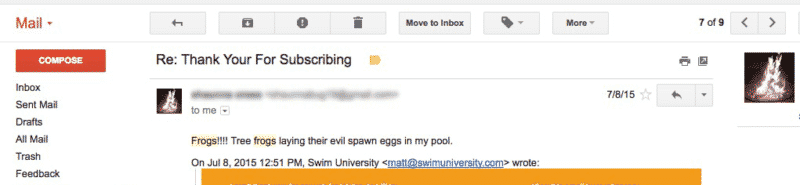 Frogs in the pool email