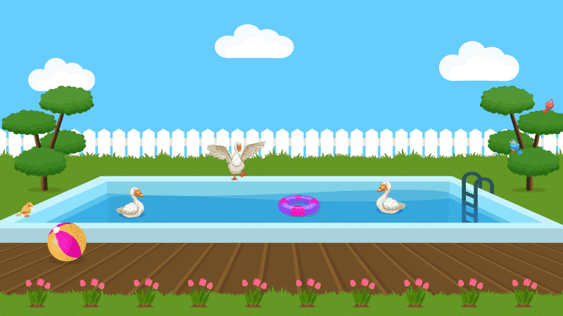 How to Keep Ducks Out of Your Pool