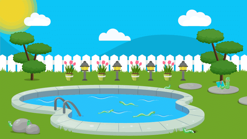 How to Get Rid of Worms in Your Pool
